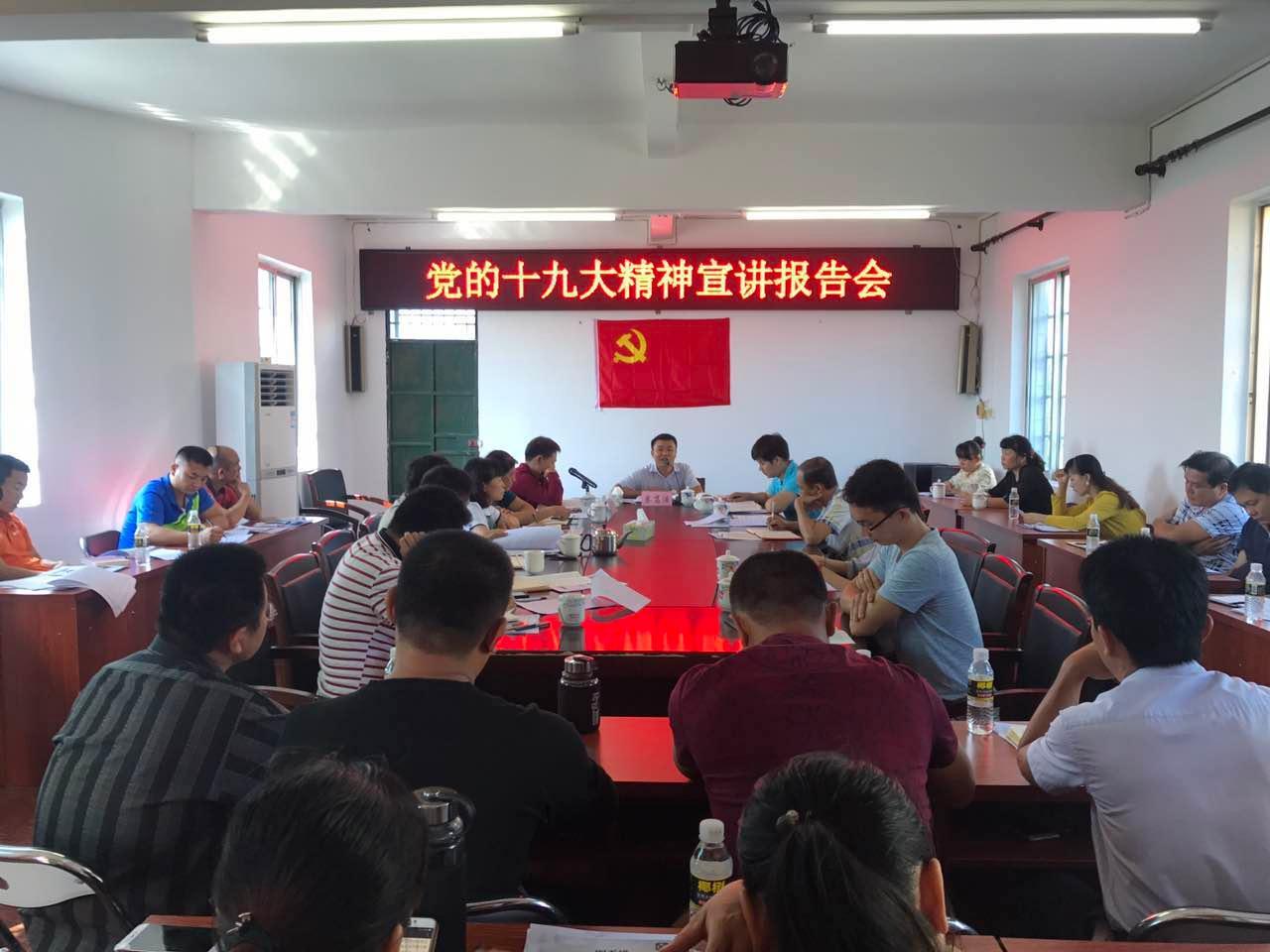 长丰镇党委书记蔡笃浩到东和居宣讲党的十九大精神