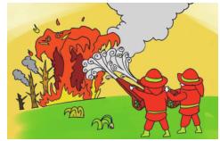 (十二)森林火灾